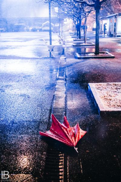 GRAD BANJA LUKA - Fotograf Leon Bijelic
