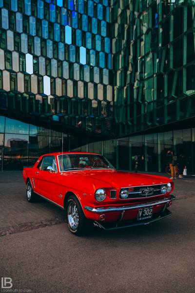 ICELAND - CAPITAL CITY REYKJAVIK - PHOTOS - SUNSET VIEW BEAUTIFUL PLANE PURPLE COLOR - the Harpa Concert Hall - Old Timers Car Cars